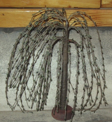 Black Willow Tree - 14 Inch-willow trees, black rice pips, 14 inch
